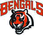 CINCINNATI BENGALS Vinyl Decal / Sticker ** 5 Sizes ** $3.97 USD on eBay