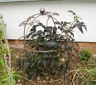 SMALL & LARGE  BELL CLOCHE BARE METAL READY TO RUST (SINGLES, PACKS 2 & PACKS 4)