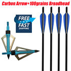 Crossbow Bolt Carbon Arrows with 100grains Broadhead Targeting Hunting Powerful