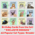 Birthday Card From The Cat, For Men Women Husband Wife Popular Pet Cats Kitty