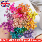30pcs Mini Daisy Small Star Dried Flowers Bouquet Natural Plants Home Decor