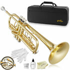 Bb Standard Trumpet, Brass Band Instrument B Flat Key w/ Padded Case, Mouthpiece