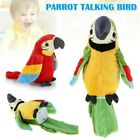 Talking+Parrot+Moves+Repeat+imitates+Your+Voice+gift+joke+and+fun+toy.