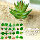 Mixed Artificial Succulent Plants Fake Plant Unpotted In Pots Garden Home Decor