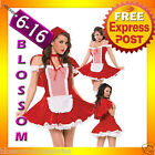 2433 Little Red Riding Hood Fancy Dress Costume + Cape