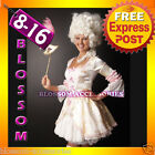Pink Marie Antoinette Renaissance Masquerade Ball Fancy Dress Halloween Costume