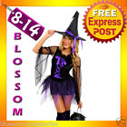 F5 Ladies Purple Wicked Witch Scary Halloween Fancy Dress Costume Outfit + Hat