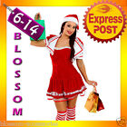 F22 Santa Claus Christmas Helper Fancy Dress Costume Xmas Party Outfit & Hat