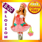 F45 Ladies Strawberry Shortcake Storybook Fancy Halloween Costume Party Outfit