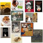 Small Pet Magnet Chinchilla Guinea Pig Hedgehog Ferret Hamster Choose Fave