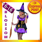 G57 Ladies Moonlight Midnight Purple Witch Fancy Dress Scary Halloween Costume
