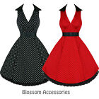 RKH12 Hearts & Roses Polka Dots Party Work Rockabilly Dress 50's Vintage Swing
