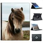 Dirty White Horse Folio Wallet Leather Case For iPad 2, 3 & 4