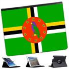 Dominica Flag Folio Wallet Leather Case For iPad 2, 3 & 4