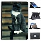 Grey & White Short Hair Cat On Park Bench Folio Wallet Leather Case For iPad Air