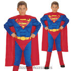 CK192 Superman Muscle Chest Superhero Hero Child Boys Book Week Costume Outfit