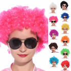 11 Colours 1970's Funky Fun Afro Wigs Clown Wig Fancy Dress Costume Club Wear