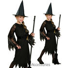 CK274 Child Black Witch Book Week Party Girls Halloween Fancy Dress Costume