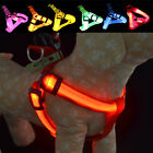 Pet Dog Harness LED Light Up Belt Safety Puppy Flashing Collar Lead Leash Rope