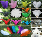 "Wholesale 10pc High Quality Natural OSTRICH Feathers Wedding Decor 6-18""/15-45cm"