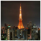 TOKYO JAPAN Tokyo Tower Night City Cityscape Skyline Poster/Print