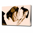 0631 LARGE POP ART BULL DOG CANVAS PRINT