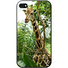 African Giraffe Hard Case For Apple iPhone 4/4s