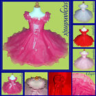USD06A  Baby Christening Wedding Christmas Flower Girls Dress 6 Monthsto 12 Yrs