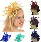 Melbourne Cup Spring Races Racing Carnival Headband or Clip Hatinator Fascinator