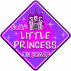 NEW *Castle Fantasy* DADDY'S LITTLE PRINCESS * Baby on Board Car Window Sign