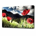 LARGE POPPIES CANVAS PRINT 2148
