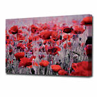 LARGE POPPIES CANVAS PRINT 2268