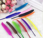 20pcs Lots Colroful Natural Goose Feather 4-6 inches Multifunction Wedding Decor