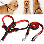 Strong Denim Dog Pet Puppy Adjustable Nylon Harness Lead Leash Traction Rope