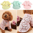 Hot Summer Puppy Dog Cat Pet Various Fashionable Clothes Vest T Shirt Lovely