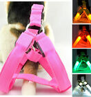 LED Glow Flash Light Dog Puppy Belt Harness Leash Tether Pet  Collar Rope DT