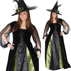CL991 Goth Maiden Wicked Witch Womens Halloween Fancy Dress Gown Plus Costume