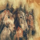 SOUTHWEST RUSTIC HORSES  COASTERS  U PICK SET SIZE
