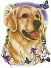 Golden Retriever Burnett Pick Your Size T Shirt Youth Small-6 X Large image