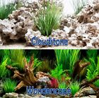 Внешний вид - Seaview CloudStone/Wonderscape 12in Aquarium Double-Sided Background