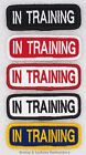 1 IN TRAINING TITLE PATCH service dog 1X3 INCH Danny & LuAnns Embroidery