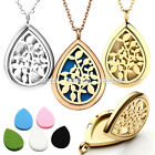 Hollow Steel Olive Branch Openable Diffuser Aromatherapy Locket Pendant Necklace