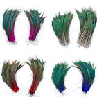 10PCS Natural Sword Peacock Feather 12-14 inches DIY Crafts Home Decoration