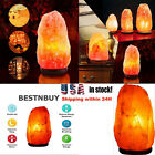 Himalayan Salt Lamp Natural Crystal Healing Ionizing Rock Dimmer Switch Glow