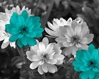 Black White Teal Flowers Modern Bathroom Bedroom Home Decor Wall Art Picture
