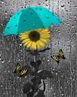 Teal Yellow Sunflower Unbrella Raindrops Bathroom Bedroom Home Wall Art Picture