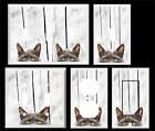 GRAY CAT  LIGHT SWITCH COVER PLATE    PEEK A BOO KITTY