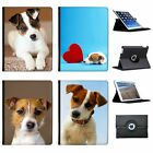 Jack Russell Terrier Dog Folio Cover Leather Case For Apple iPad