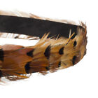 Hawaiian Feather Hatband Plume Headband For All Types Of Hats and Caps