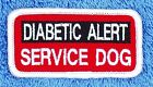"""HOOK BACK DIABETIC ALERT SERVICE DOG PATCH Large 2.5X4 Small 1.5X3"""" Danny LuAnns"""